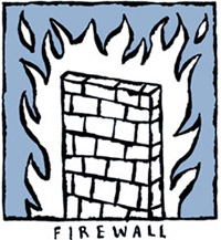 firewall cartoon